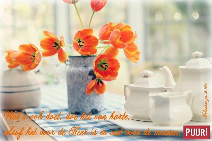 Wat u ook doet, doe het van harte,alsof het voor de Heer is en niet voor de mensen. (Kolossenzen 3:23)