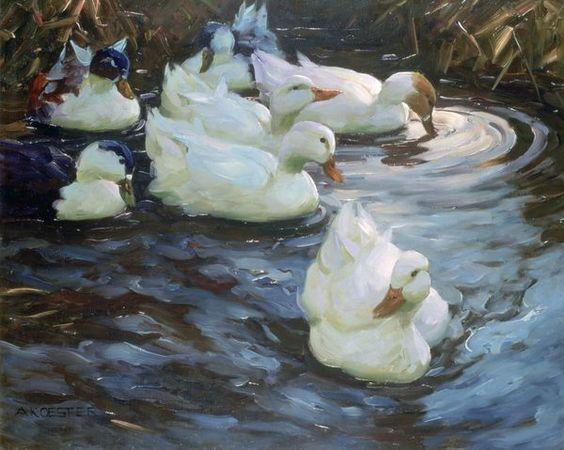 Best 25 Duck Pond Ideas On Pinterest Duck Coop Duck