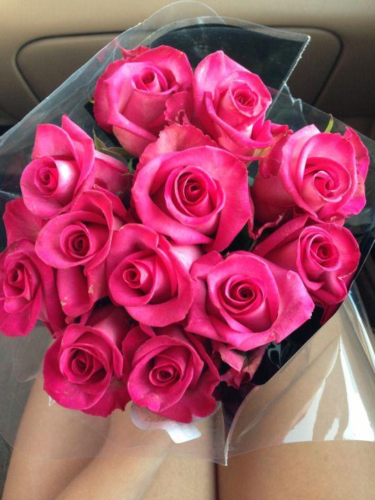 7115 best flowers & plants images on Pinterest | Beautiful flowers ...