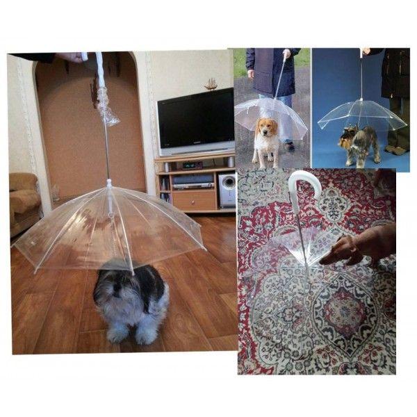 deštník pro pejska