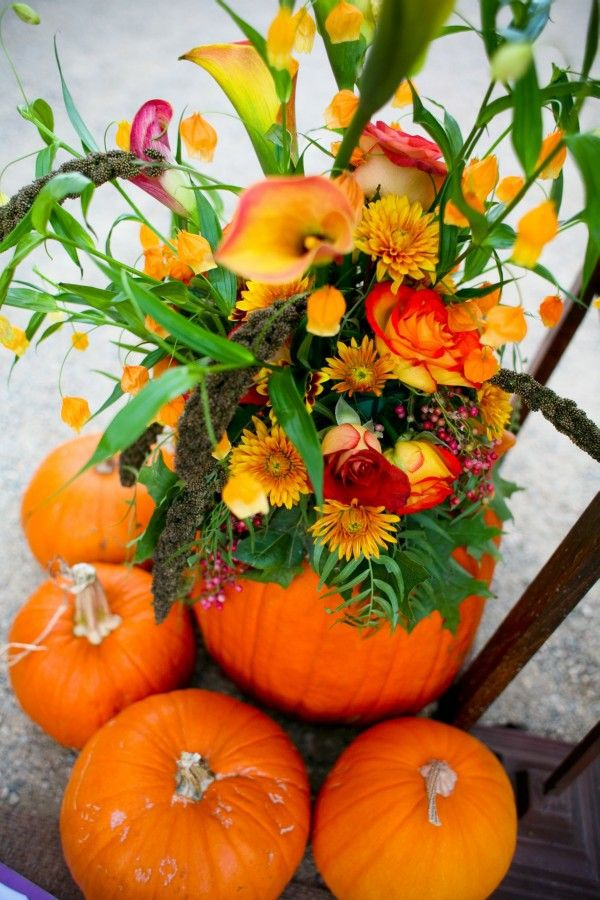 Pumpkins and flowers. Use the resources that nature is giving you at this time of year. #pumpkinplanter