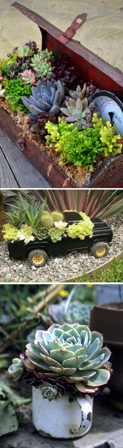 Love the tiny car! I don't know what it is I love about the old beater cars overflowing with flowers, but I do. Since I don't think nick would ever allow me to out an old vw bug in the backyard, this may be a better option!:
