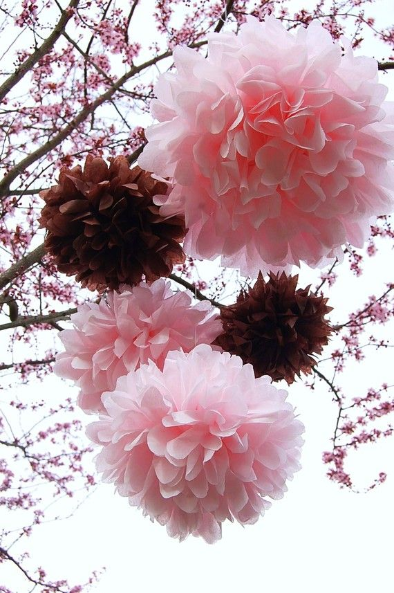 Pink & Red Paper Poms