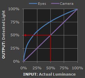 linear vs nonlinear gamma - cameras vs human eyes