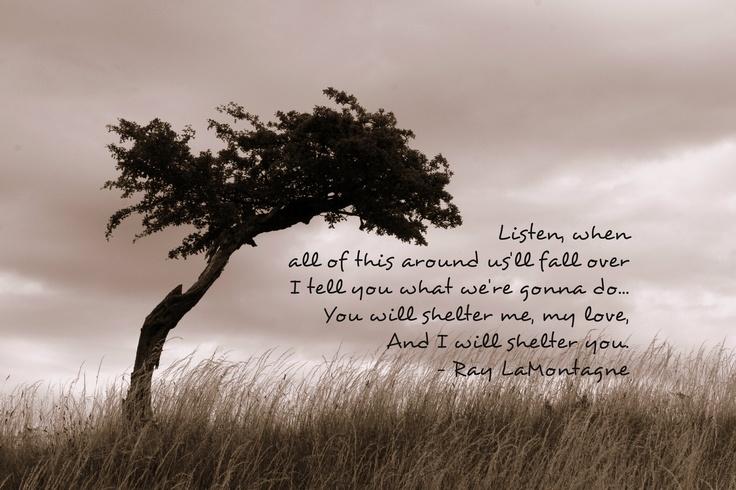 Shelter-- Ray LaMontagne