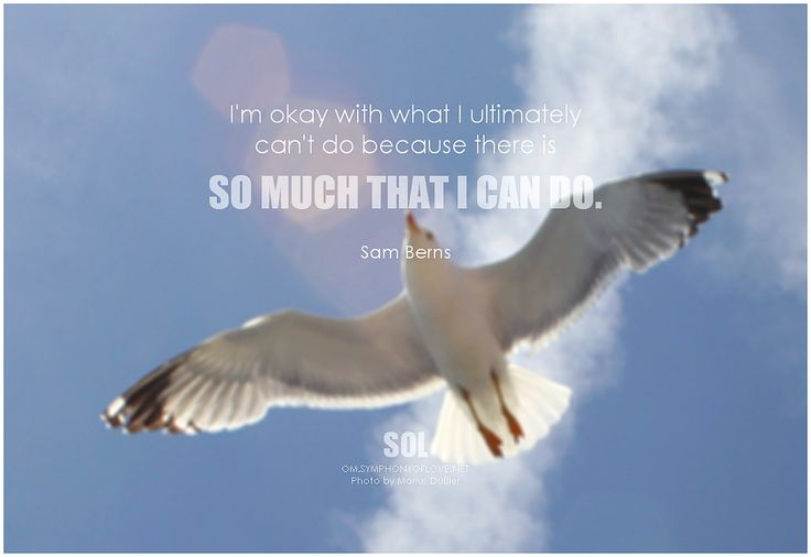 I'm okay with what I ultimately can't do because there is so much that I can do. - Sam Berns #positivethinking #quote #inspirational #inspirationalquote #inspirationalwords #picturequote #picture