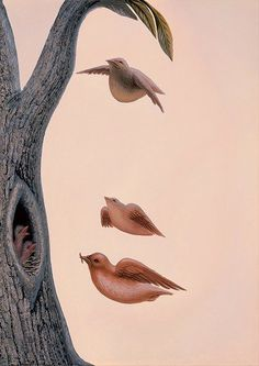 A surrealist illusion painting by Octavio Ocampo that uses flying birds to create a woman's face