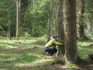 Outdoor mindfulness and fitness at Målsånna Turism