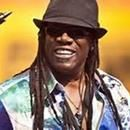 """Clarence Clemons, Jr., also known as The Big Man, was a saxophonist, musician, and actor. He was reported to be 6′ 5″  tall. From 1972 until his death, he was a member of Bruce Springsteen's E Street Band, playing the tenor saxophone. He can be heard playing on songs such """"Born to Run"""" and """"Junglela...Clarence Clemons, Jr., also known as The Big Man, was a saxophonist, musician, and actor. He was reported to be 6′ 5″  tall. From 1972 until his death, he was a member of Bruce Springsteen's E…"""