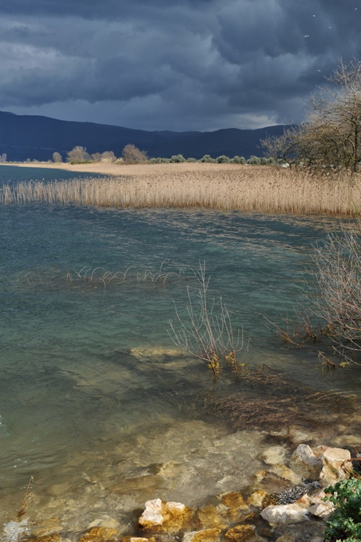 Τριχωνίδα - Η παραλίμνια περιοχή της Γαβαλού