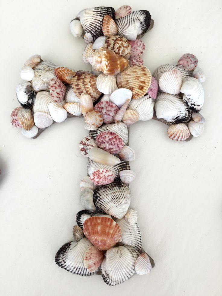 Shell cross with conk 153 best shell