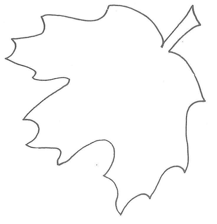 Best Leaf Templates Images On   Leaves Paper Flowers