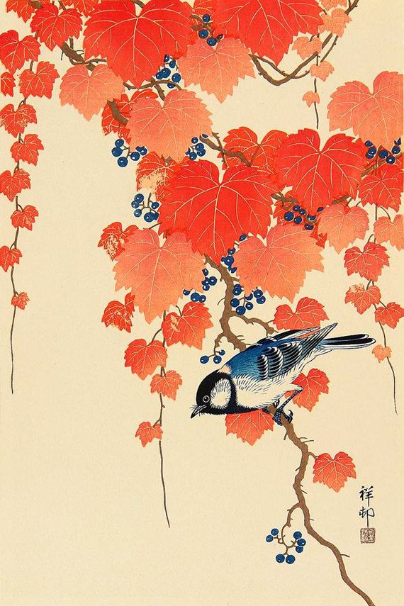 Japanese great tit woodblock bird print, red ivy, Ohara Koson
