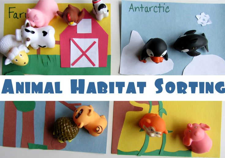 Make sorting mats for different animal habitats, such as farm, antarctic, jungle, forest, desert. Additional follow-up activities also provided.