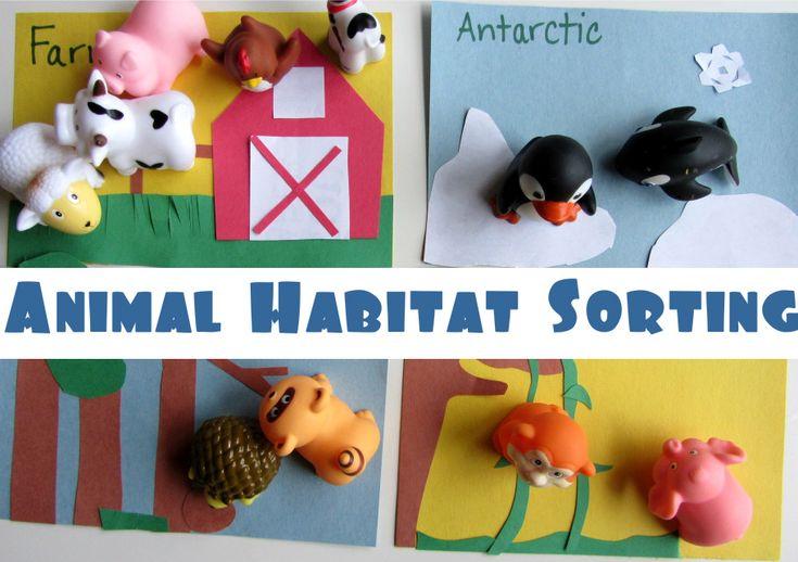 Animal Habitat Sorting Lesson