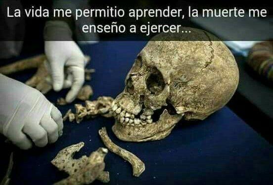 #Perito #Criminalística #Profesión