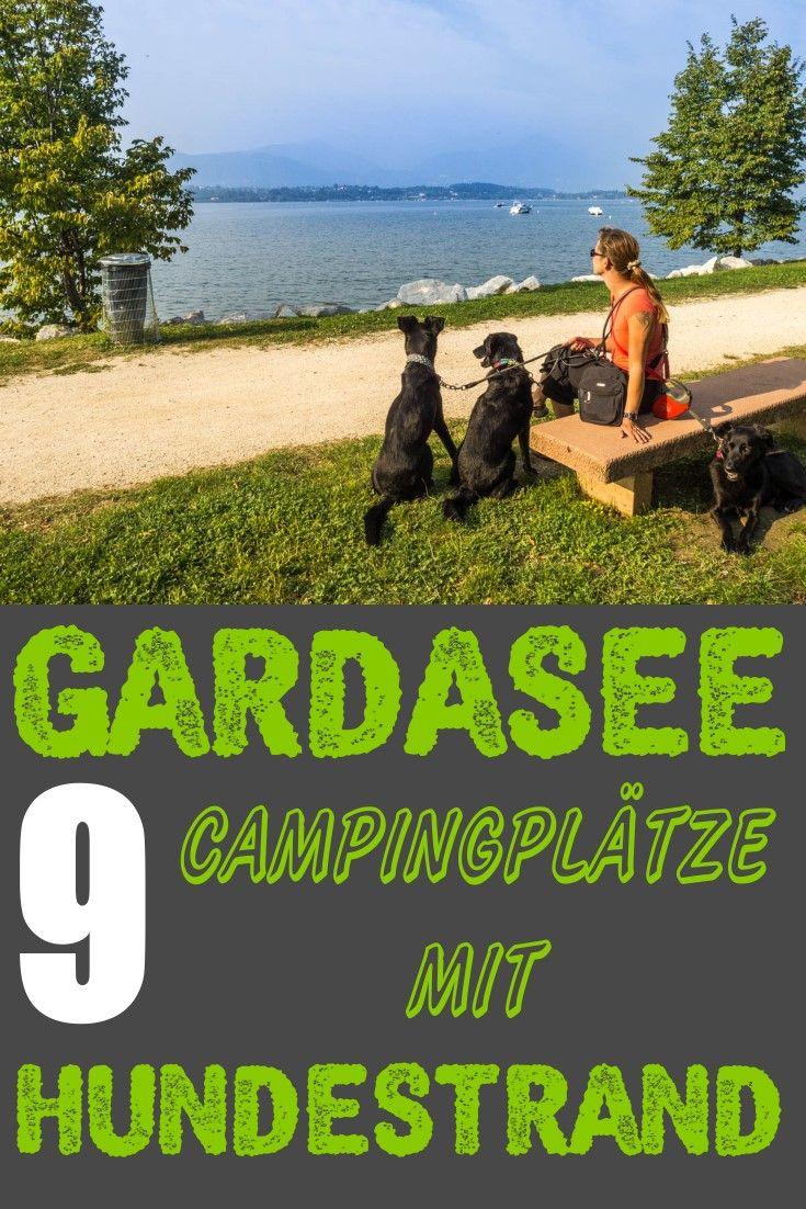 9 Campingplatze Am Gardasee Mit Hundestrand Camping Mit Hund Am Gardasee Gardasee Hundestrand Camping Camping Campingplatz Gardasee Hundestrand Gardasee
