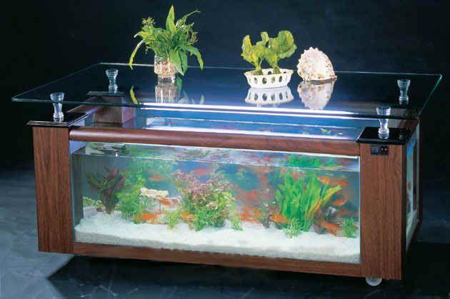 Cómo embellecer una Habitación con una mesa acuario . El acuario está llamado acuarios de mesa, utilizando el concepto de desainn con mayor ...