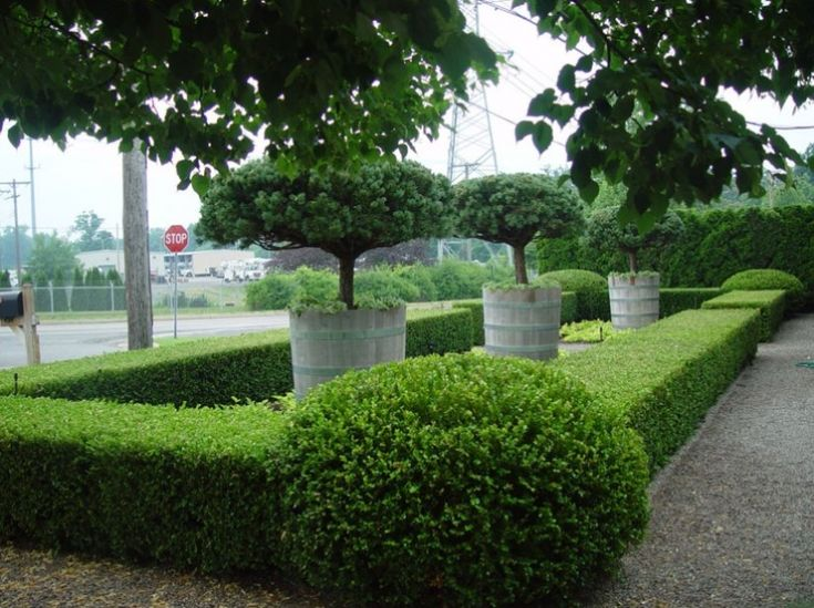 Best 25 commercial landscaping ideas on pinterest for Commercial landscaping