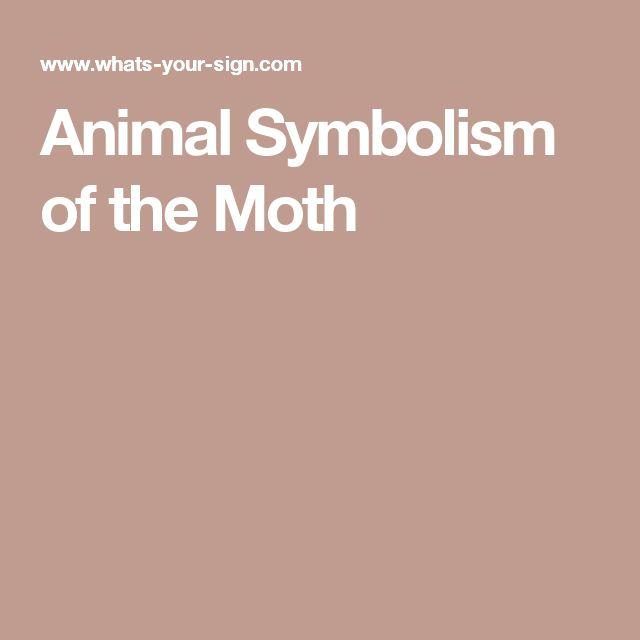 Animal Symbolism of the Moth