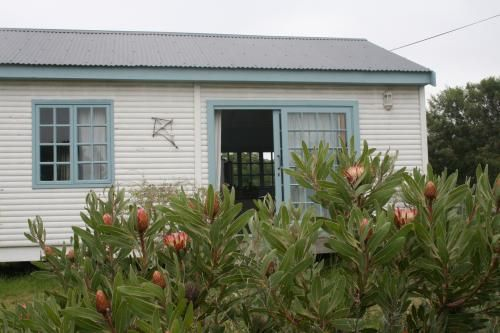 Self Catering Kite Cottage in Hermanus :: click the image to view more