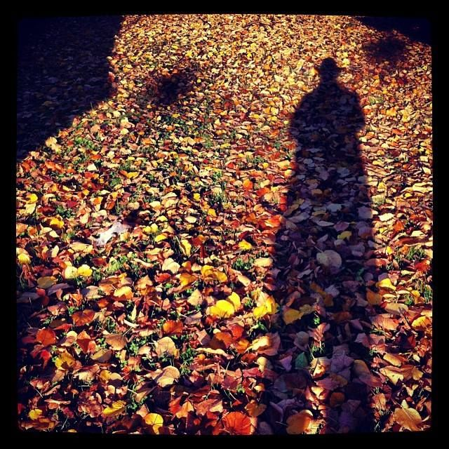 autumn leaves and me