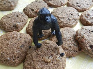 Après la galette de récupération sportive ChocoGO , voici une la Poigne de Gorille! Une galette santé SANS GLUTEN, super énergisante et bourrée de protéines et de glucides pour maximiser la récupération après l'effort (ou encore, pour commencer sa journée du bon pied). Cousine de la galette Mognon d'ourson, elle sera plaire aux amateurs de la...