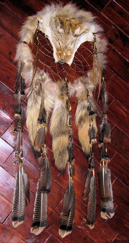 Coyote Dream Catcher Medicine Shield by HarrisVariety on ...