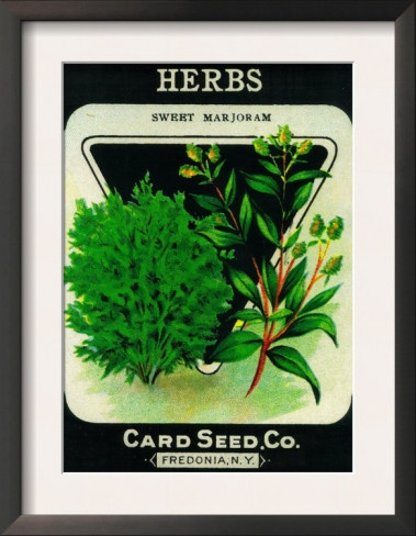 herb seed packet.