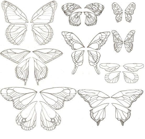 65 Best Doodles Butterflies Images On Pinterest