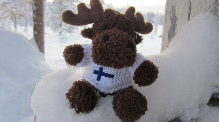 Rendieren kunnen ook knuffelbaar zijn! Leuke foto, gemaakt in het ijskoude Lapland.