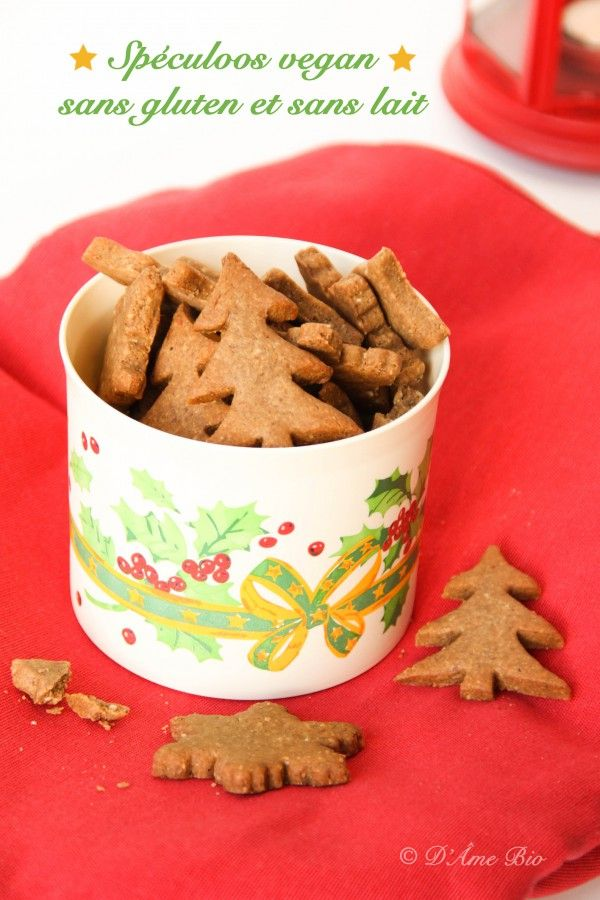 Noël : Spéculoos vegan sans gluten et sans lait hypotoxiques •120 g de farine de riz •40 g d'arrow-root •80 g de sucre rapadura •60 g de flocons de sarrasin •80 g de poudre d'amande •1 bonne pincée de sel gris •1 bonne pincée de bicarbonate de sodium •2 cas de cannelle •1 cc d'épices à pain d'épices •4 gouttes d'extrait de vanille •80 g d'huile vierge de noix de coco •9 à 10 cl d'eau chaude