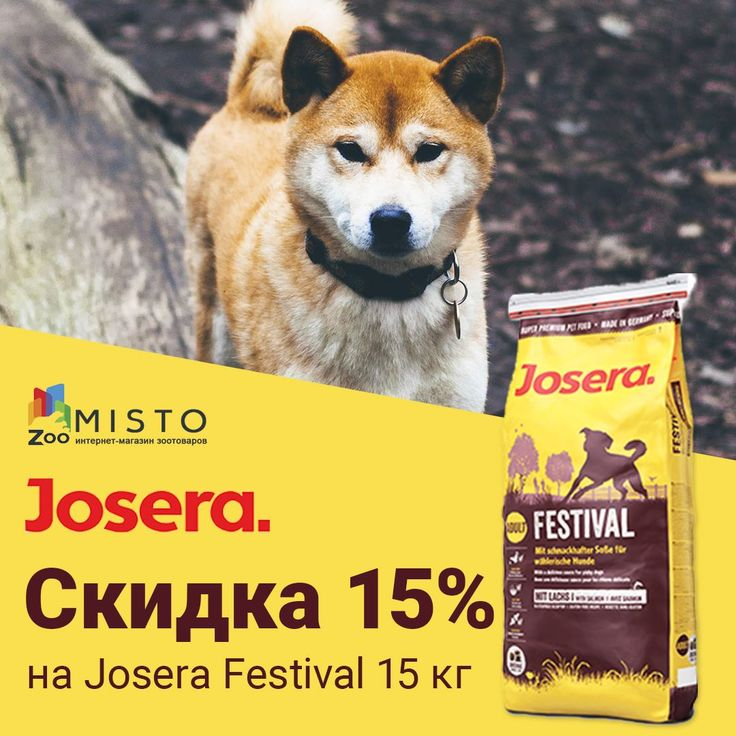 Скидка 15% на Josera Festival 15 кг  #zoomisto #zoomistocomua #интернетмагазин #зоомагазин #зоотовары #питомец #домашнийпитомец #животные #корм #josera #festival #joserafestival  Интернет-зоомагазин ZooMisto - https://zoomisto.com.ua