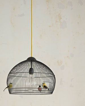 Peter Park Ietje flown? His cage also does well as a hanging lamp! Make a hole at the top of the cage so that the cord can get through. Fitting out and hang it.
