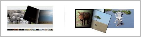 Photo organization, AdoramaPix (no binding books) and better quality pages, good idea for wedding album book