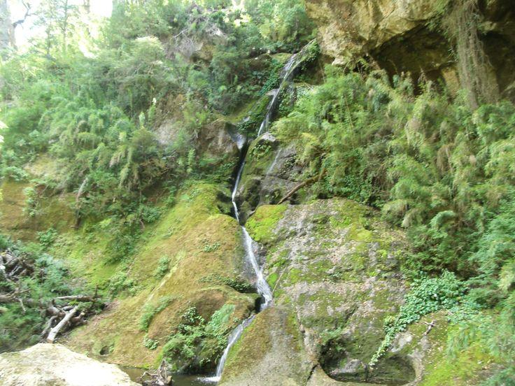 Parque Nacional Tolhuaca, región de la Araucanía.