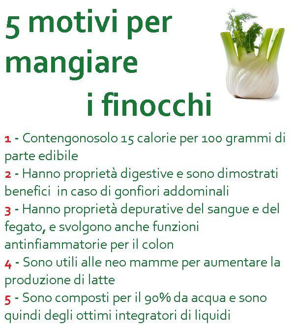 #Dieta: 5 ottimi motivi per mangiare #finocchio.