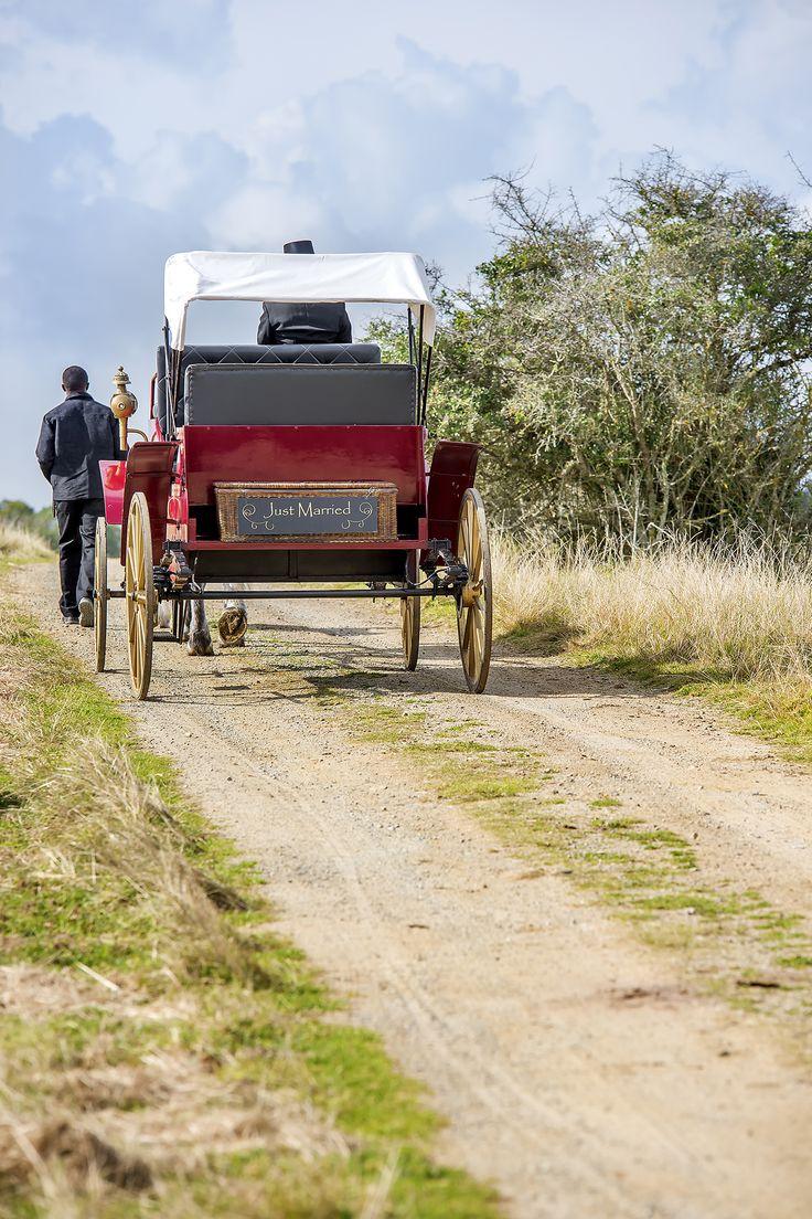 Wedding carriage