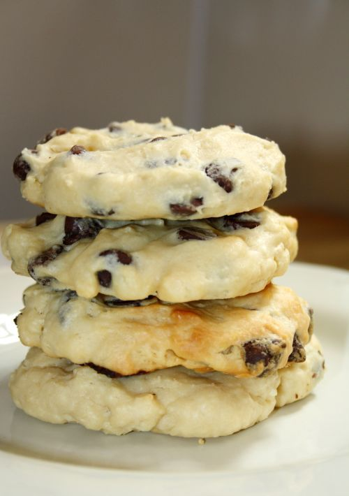 Cream Cheese Chocolate Chip Cookies - Food Frenzy Digest