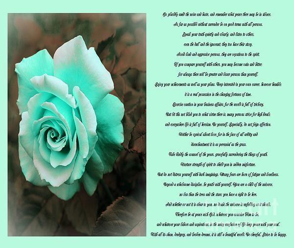 Desiderata Icy Blue Rose Sidebyside by Barbara Griffin