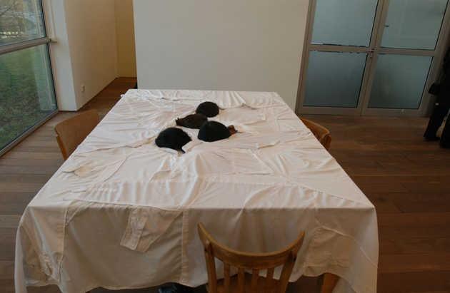 Yael Davids, Table (1997).© Marco Sweering, Museum De Paviljoens