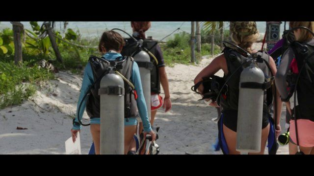 Discover the exciting world of Marine Conservation!  Explore exotic locations such as Fiji and the Mexico Yucatan all famed for their incredible marine life.  Find out more: www.gvi.co.uk/marine-conservation