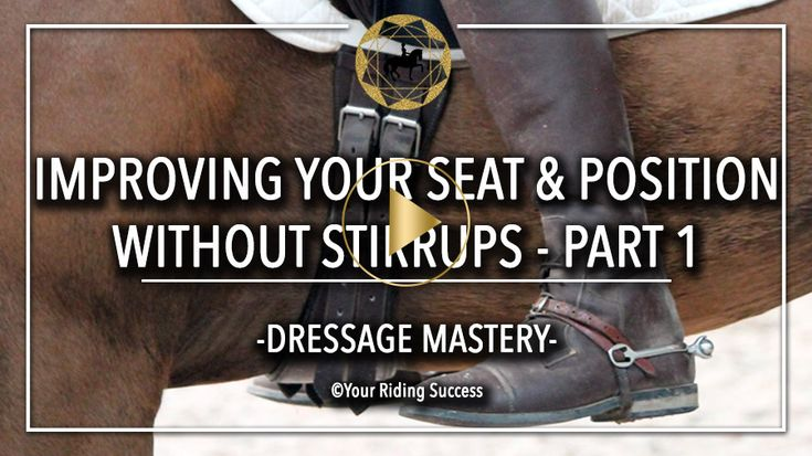 BONUS Training Plan: The Seat | DMA FB | Your Riding Success
