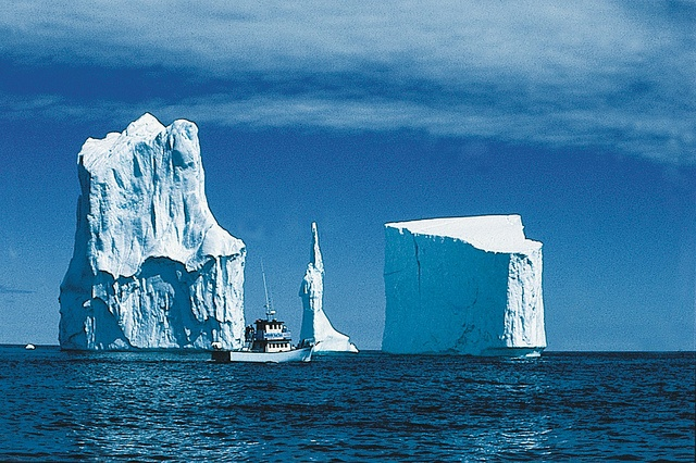 When it comes to viewing icebergs, Iceberg Alley is one of the best places in the world. On a sunny day, view these 10,000-year-old glacial giants from many points along the northern and eastern coasts – in every shape and size. With colours ranging from snow-white to the deepest aquamarine.