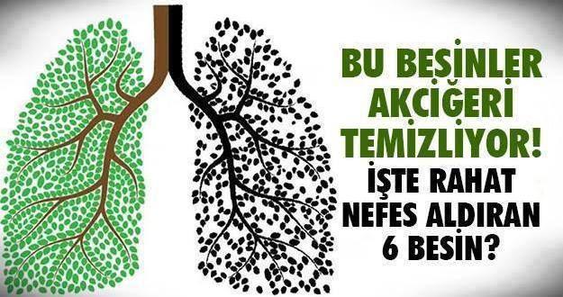 Akciğerlerimiz sayesinde nefes alıyor ve kanın tüm vücudumuza temiz oksijen dağıtmasını sağlıyoruz. Bu kadar hay…ati organ olan akciğerlerimizi sigara, toz ve kirli hava ile zehirliyoruz. Yaşamın d…