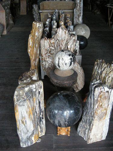 Fossil Wood Gallery | by IndoGemstone
