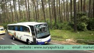 bus pariwisata bandung - YouTube