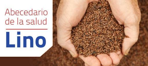 Propiedades del Lino | Nutrición Equilibrada