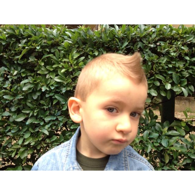 Hair...just cut!!