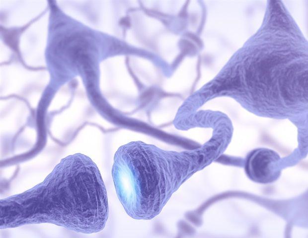 The 25 Best Motor Neuron Disease Treatment Ideas On